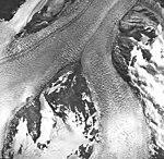 Muir Glacier, tidewater glacier junction and firnline, September 17, 1966 (GLACIERS 5697).jpg