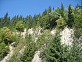 Muntele Ursoaica2.jpg