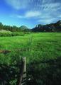 NRCSCO01013 - Colorado (1417)(NRCS Photo Gallery).tif