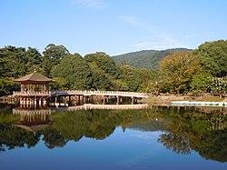Nara Park - panoramio (2).jpg