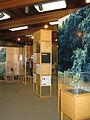 Nature Center and Planetarium in Rock Creek Park 19.JPG