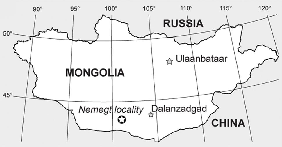 Nemegt locality