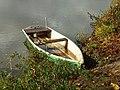 Neuvy-sur-Loire-FR-58-la Loire en automne-4.jpg