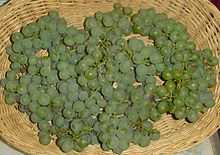 Niagara Grapes.jpg