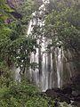 Nice waterfall Muktagiri.jpg