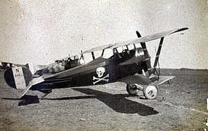 Nieuport 24bis with fancy paintjob.jpg