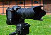 Nikon D7100 & AF-S Nikkor 70-200mm 1-2,8G ED VR II 02.jpg