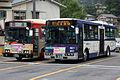 NishiTokyoBus E2040 and E59601 a.JPG