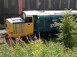 No.37314 Dalzell (Class 37) (6101013814).jpg