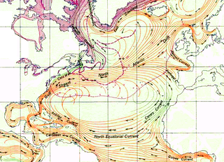 North Atlantic Gyre A major circular system of ocean currents
