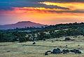 Northern California Sunrise - Flickr - Joe Parks.jpg