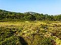 Norwegen Lebesby 1290336.jpg