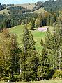 Oberstaufen - Vorderbürschgschwend-Alpe v S, Denneberg.JPG
