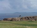 Oceano Atlántico La Coruña Torre Hércules2.JPG