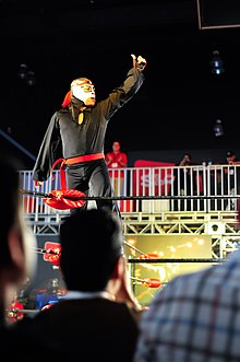 a little person dressed in a black body suit and a black and silver mask, posing on the ring ropes.