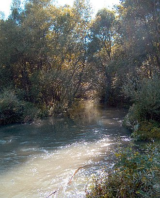 Ofanto - Image: Ofanto fiume