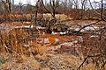 Ohio Valley Mushroom Farm, Acid-Mine Drainage (AMD) (13671186664).jpg