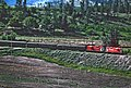 Okanagan Express CP 8836 and 8839 near West Summerland, BC on May 23, 1983 (34809971833).jpg