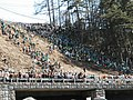 Onbashira festival - Kiotoshi (Log drop) - panoramio.jpg