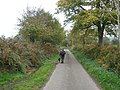 One man and his dog - geograph.org.uk - 1021976.jpg