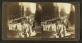 One of the busiest streets in the world - State Street, Chicago, Ill. (18 miles long). North from Madison Street, from Robert N. Dennis collection of stereoscopic views.png
