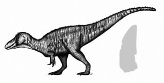 <i>Ostafrikasaurus</i> genus of reptiles (fossil)