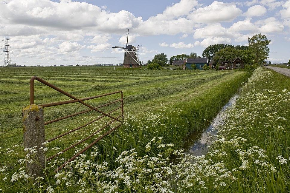 Overzicht van de molen, gezien vanaf het weiland - Fransum - 20420708 - RCE