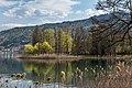 Pörtschach Halbinsel Naturpark im Landschaftsschutzgebiet NW-Ansicht 11042020 8680.jpg