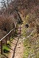 Pörtschach Leonstein Gloriettenweg Waldwanderweg Ostteil 29032020 8593.jpg