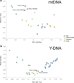 PCA using haplogroup frequencies for mtDNA and Y-DNA in Parsi and others.png