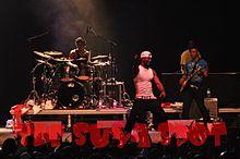 P Square US Canada Tour 2010.jpg