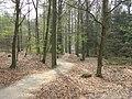 Paasberg (Overijssel) P4130371.JPG