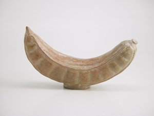 Inga feuillei - Moche culture vessel in the form of a pacay pod