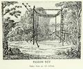 Page The Passenger Pigeon - Mershon djvu 254 - Pigeon net.png