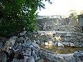 Paignton , Paignton Zoo Meerkat Enclosure - geograph.org.uk - 1485081.jpg