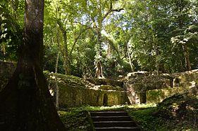 Palenque Grupo I.jpg