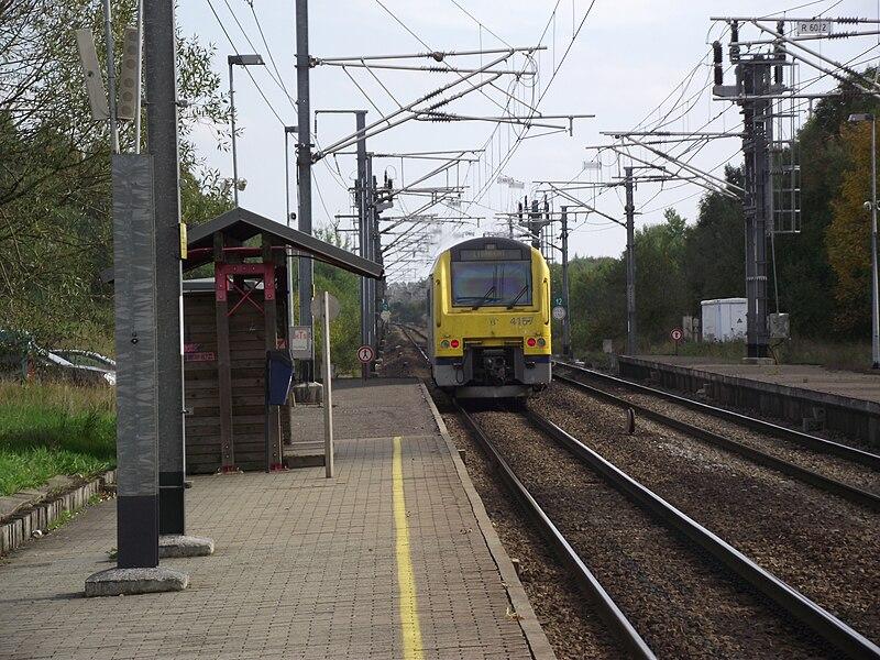 Paliseul station met dieseltreinstel 41