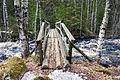 Palsankosken luontopolku 2.jpg