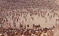 Pamplona July 1968.jpg