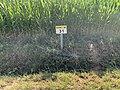 Panneau E53c PK 31 Route D80 Route Vonnas St Cyr Menthon 1.jpg