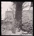 Paolo Monti - Serie fotografica - BEIC 6341324.jpg