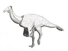 220px-Paraxenisaurus_normalensis_as_Deinocheirid.jpg