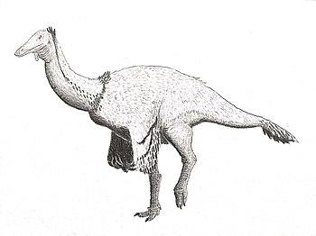 Paraxenisaurus normalensis as Deinocheirid.jpg