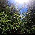 Park Karamzina 20210629-232603 Polibino.jpg