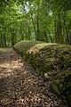 Park Kulturowy Wietrzychowice - panoramio.jpg
