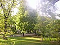 Park im. Stanislawa Moniuszki 1.jpg