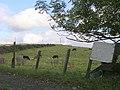 Parkhillhead Farm - geograph.org.uk - 57791.jpg