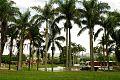 Parque Francisco de Miranda. 4.jpg