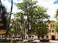 Parque Moniquira 2.JPG