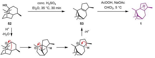 Patchoulene Oxide Synthesis J.png